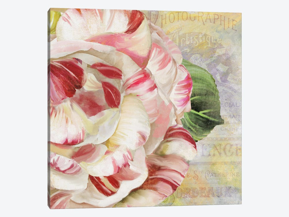 Camellias II by Color Bakery 1-piece Art Print