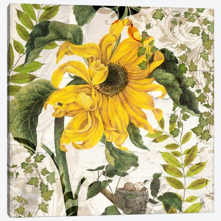 Carina II Canvas Print #CBY228} by Color Bakery Canvas Wall Art