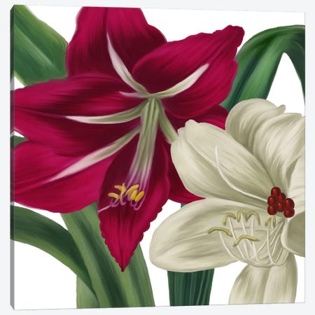Christmas Amaryllis I Canvas Print #CBY243} by Color Bakery Canvas Artwork