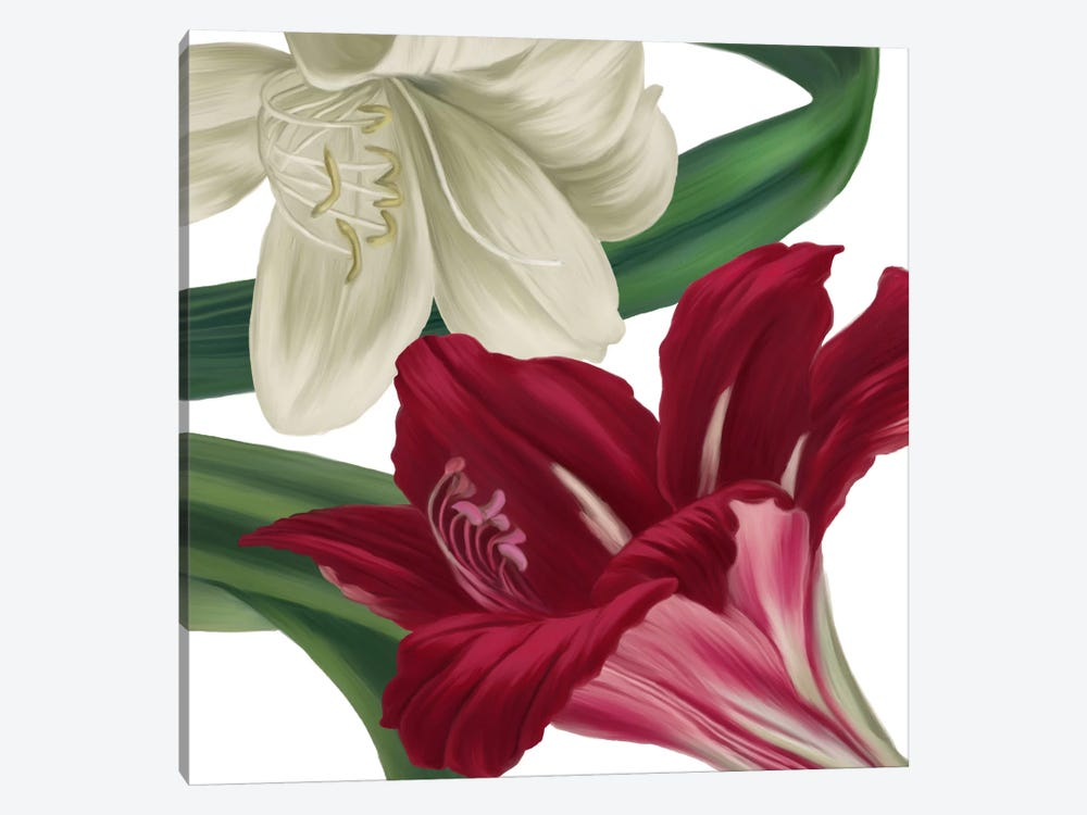 Christmas Amaryllis II by Color Bakery 1-piece Art Print