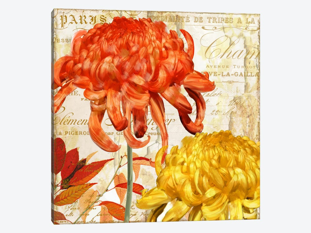 Chrysanthemes I by Color Bakery 1-piece Canvas Artwork