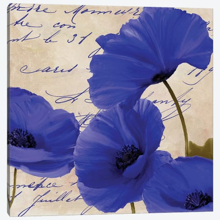 Coquelicots Bleues I Canvas Print #CBY282} by Color Bakery Canvas Artwork