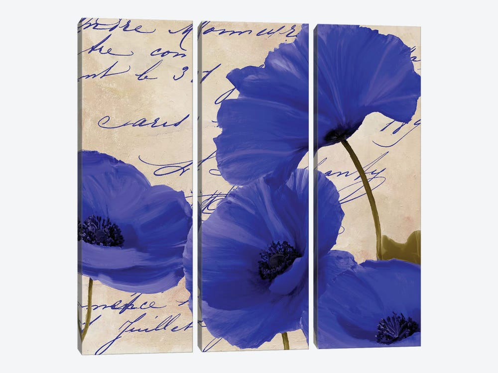 Coquelicots Bleues I by Color Bakery 3-piece Art Print