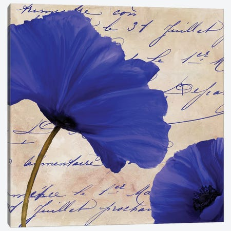 Coquelicots Bleues II Canvas Print #CBY283} by Color Bakery Canvas Art
