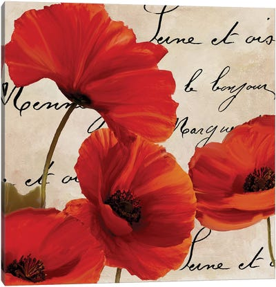 Coquelicots Rouge I Canvas Art Print