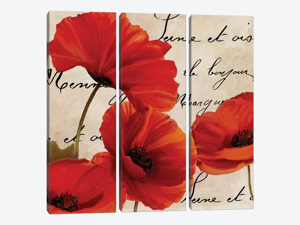 Coquelicots Rouge I by Color Bakery 3-piece Canvas Print