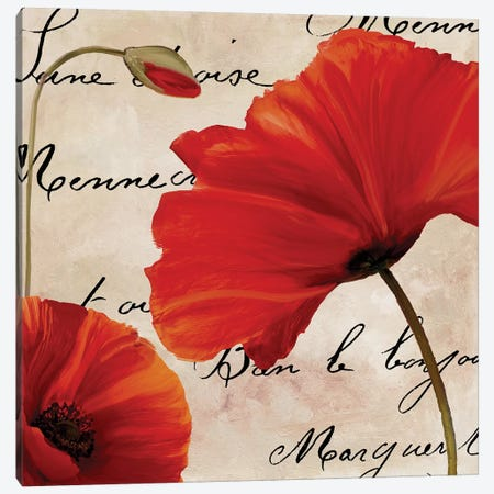 Coquelicots Rouge II Canvas Print #CBY285} by Color Bakery Art Print