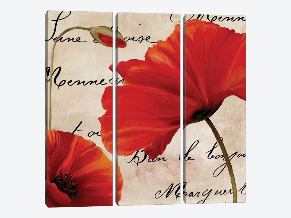 Coquelicots Rouge II by Color Bakery 3-piece Canvas Wall Art