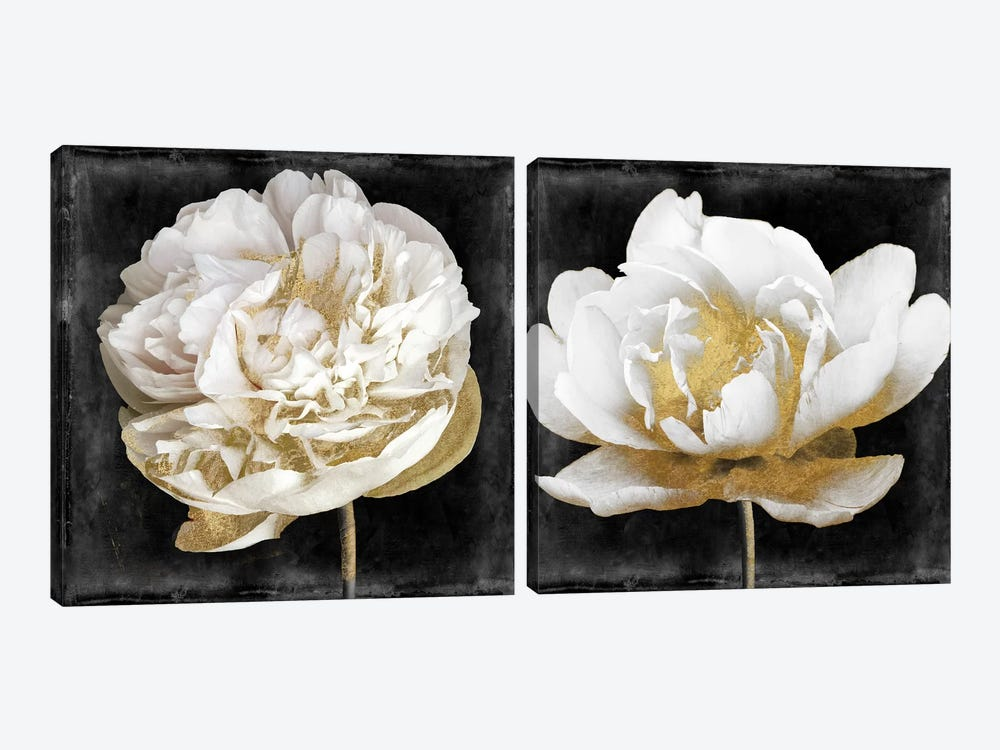 Gilda Diptych by Color Bakery 2-piece Canvas Art