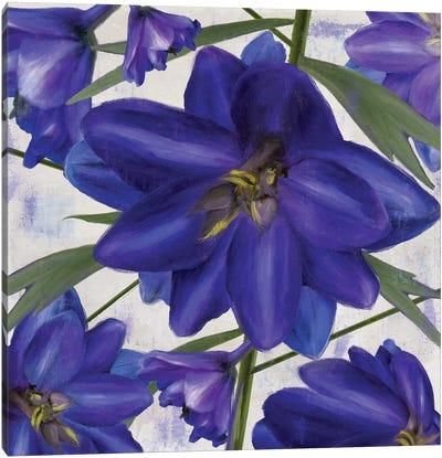 Delphine I Canvas Art Print