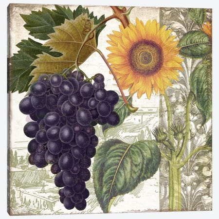 Dolcetto I Canvas Print #CBY331} by Color Bakery Canvas Art