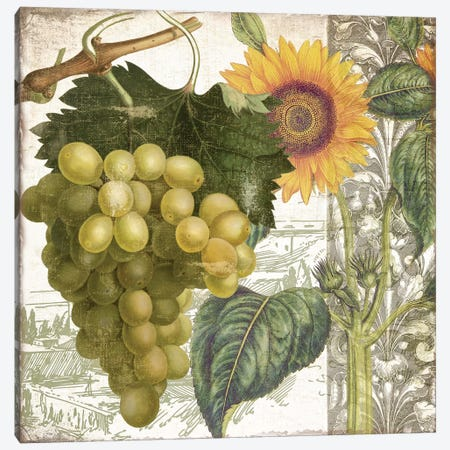 Dolcetto III Canvas Print #CBY333} by Color Bakery Canvas Artwork