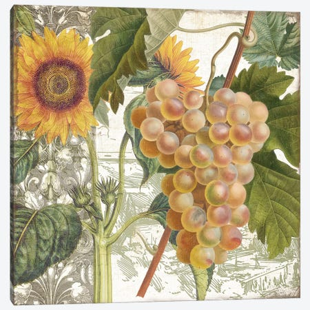 Dolcetto IV Canvas Print #CBY334} by Color Bakery Canvas Print
