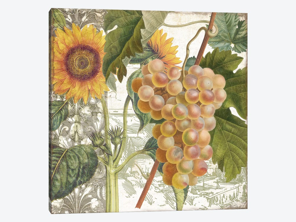 Dolcetto IV 1-piece Canvas Art Print