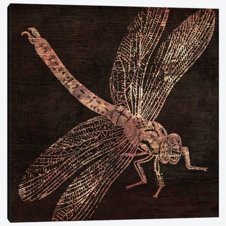 Dragonfly Canvas Print #CBY337} by Color Bakery Canvas Print