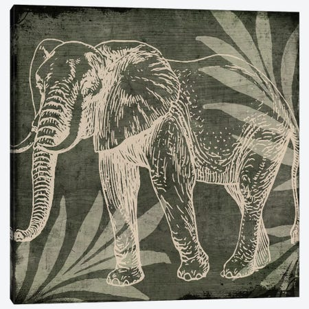 Elephant I Canvas Print #CBY340} by Color Bakery Art Print