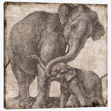 Elephant II Canvas Print #CBY341} by Color Bakery Canvas Art Print
