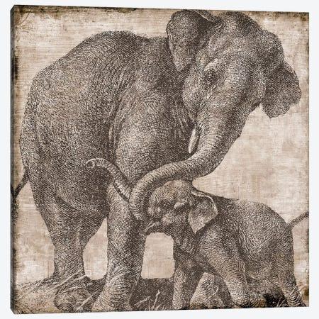 Elephant II Canvas Print #CBY341} by Color Bakery Canvas Art Print