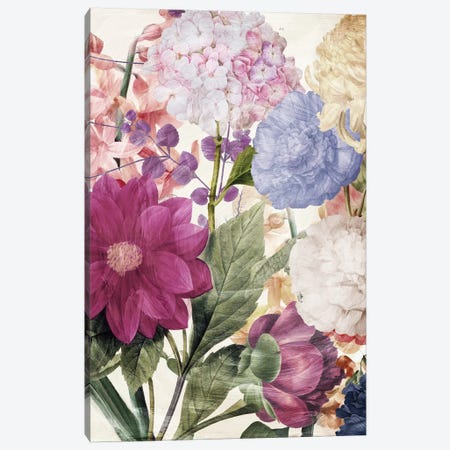 Embry II Canvas Print #CBY343} by Color Bakery Art Print