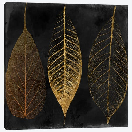 Fallen Gold I Canvas Print #CBY362} by Color Bakery Art Print