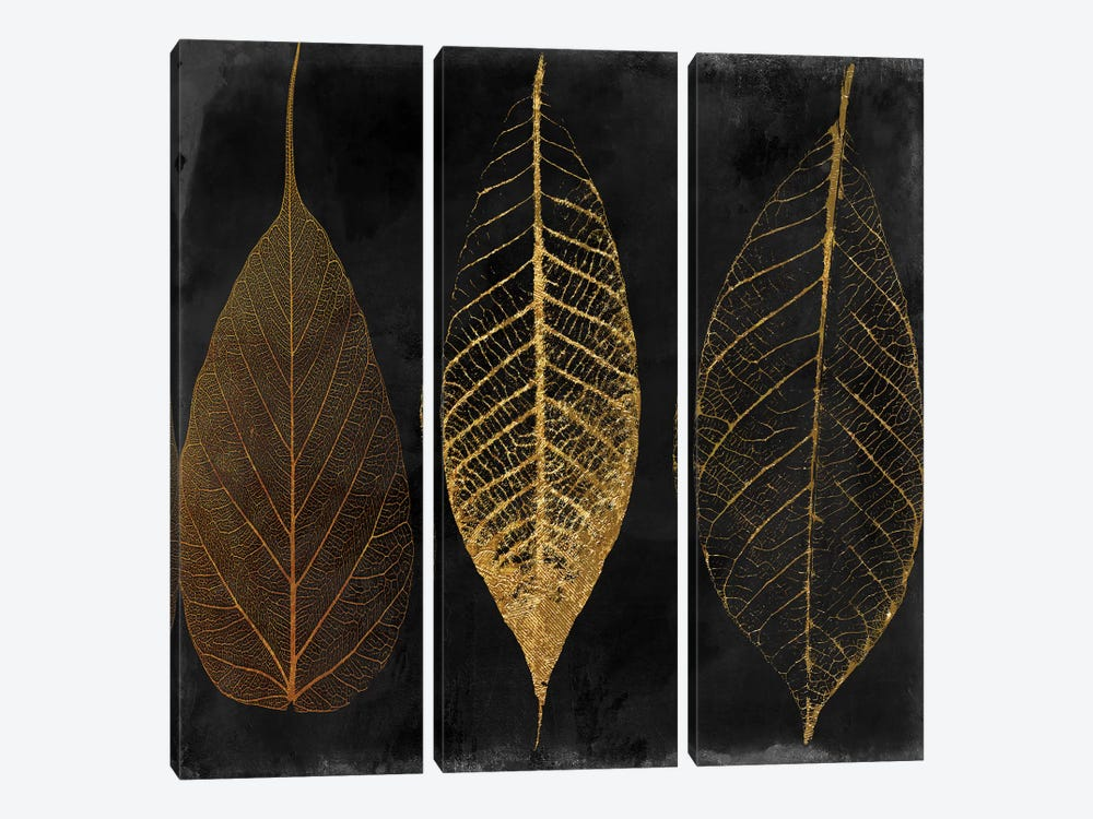 Fallen Gold I by Color Bakery 3-piece Canvas Art
