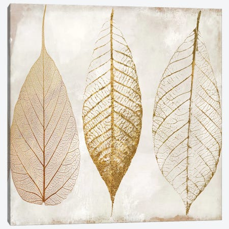 Fallen Gold II Canvas Print #CBY363} by Color Bakery Art Print
