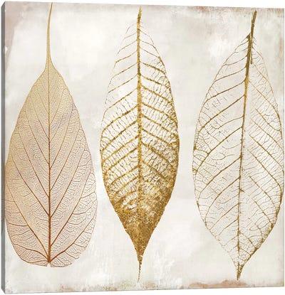 Fallen Gold II Canvas Art Print