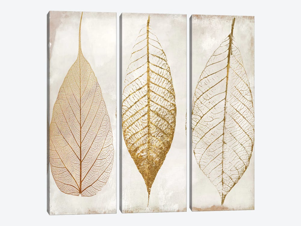 Fallen Gold II by Color Bakery 3-piece Canvas Print