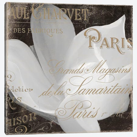 Fleurs Blanc II Canvas Print #CBY395} by Color Bakery Canvas Print