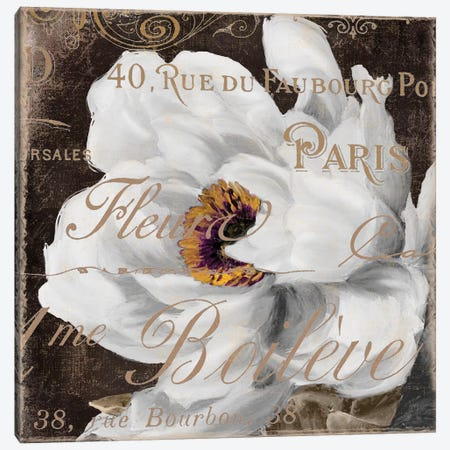 Fleurs Blanc III Canvas Print #CBY396} by Color Bakery Canvas Print