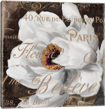 Fleurs Blanc III Canvas Art Print