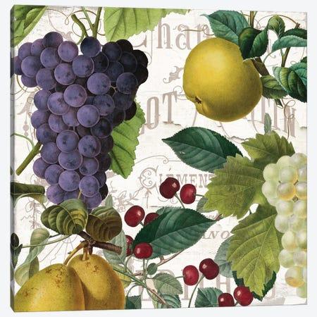 Fruit Bowl I Canvas Print #CBY427} by Color Bakery Canvas Art Print
