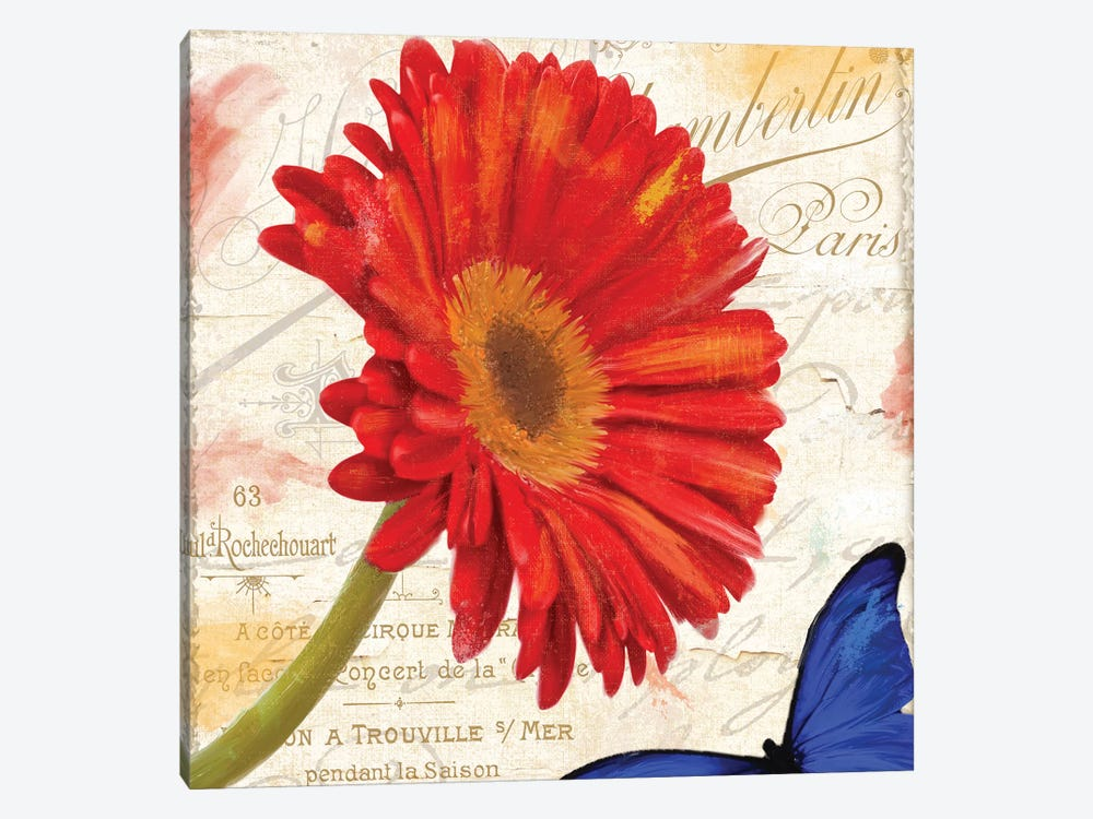 Gerbera Daisy by Color Bakery 1-piece Canvas Artwork