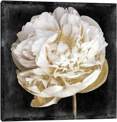 Gilda I Canvas Art Print