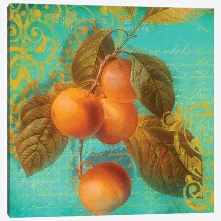 Glowing Fruits I Canvas Print #CBY459} by Color Bakery Canvas Print