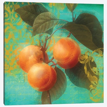 Glowing Fruits II Canvas Print #CBY460} by Color Bakery Canvas Artwork