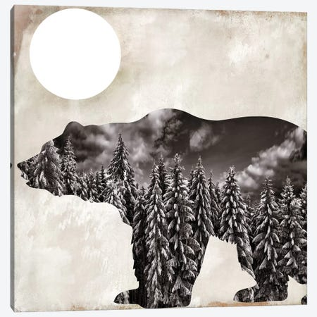 Going Wild VI Canvas Print #CBY469} by Color Bakery Canvas Wall Art