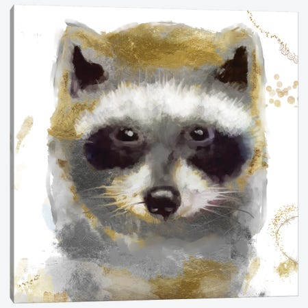 Golden Forest - Raccoon Canvas Print #CBY476} by Color Bakery Canvas Artwork