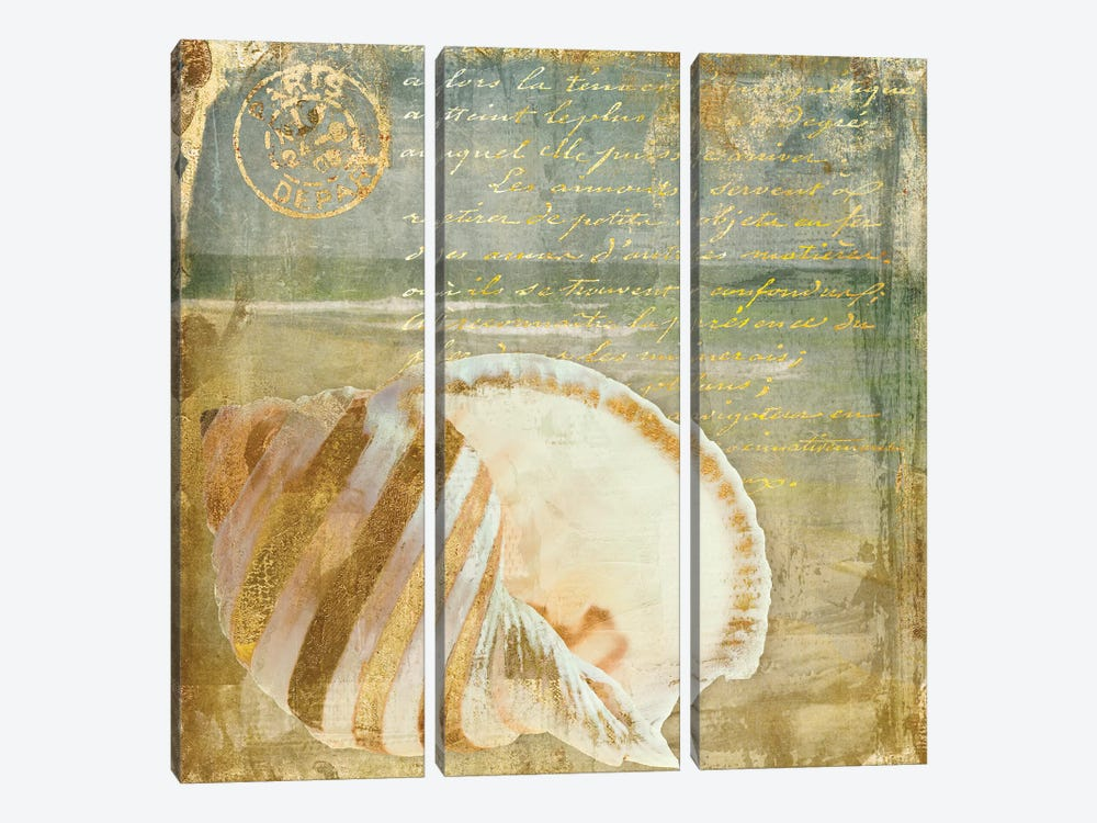 Golden Sea II by Color Bakery 3-piece Canvas Artwork