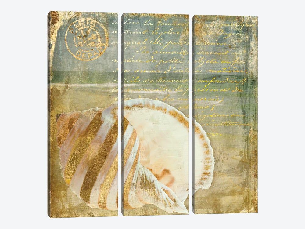 Golden Sea II by Color Bakery 3-piece Canvas Artwork