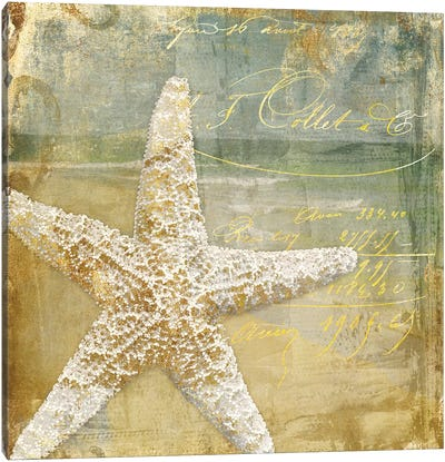 Golden Sea IV Canvas Art Print