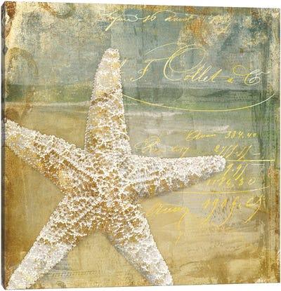 Golden Sea IV Canvas Art Print
