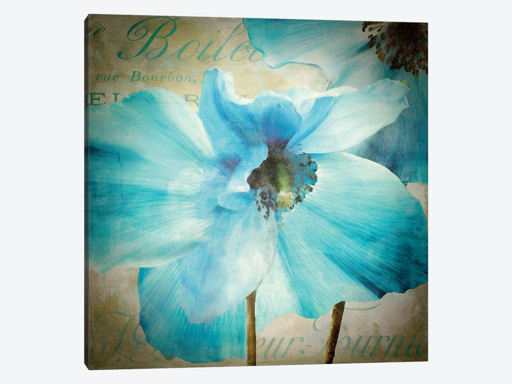 Himalayan Blue II by Color Bakery 1-piece Canvas Print
