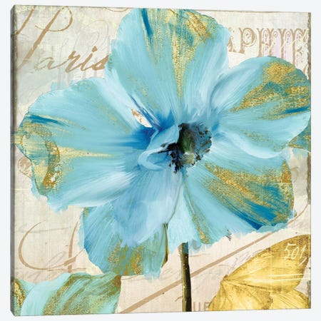 Himalayan Poppy Canvas Print #CBY494} by Color Bakery Canvas Art
