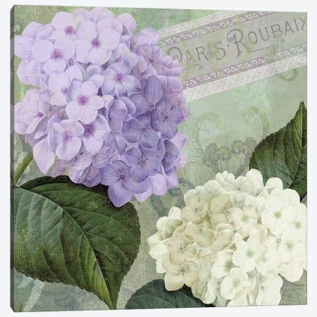 Hortensia I Canvas Print #CBY498} by Color Bakery Art Print