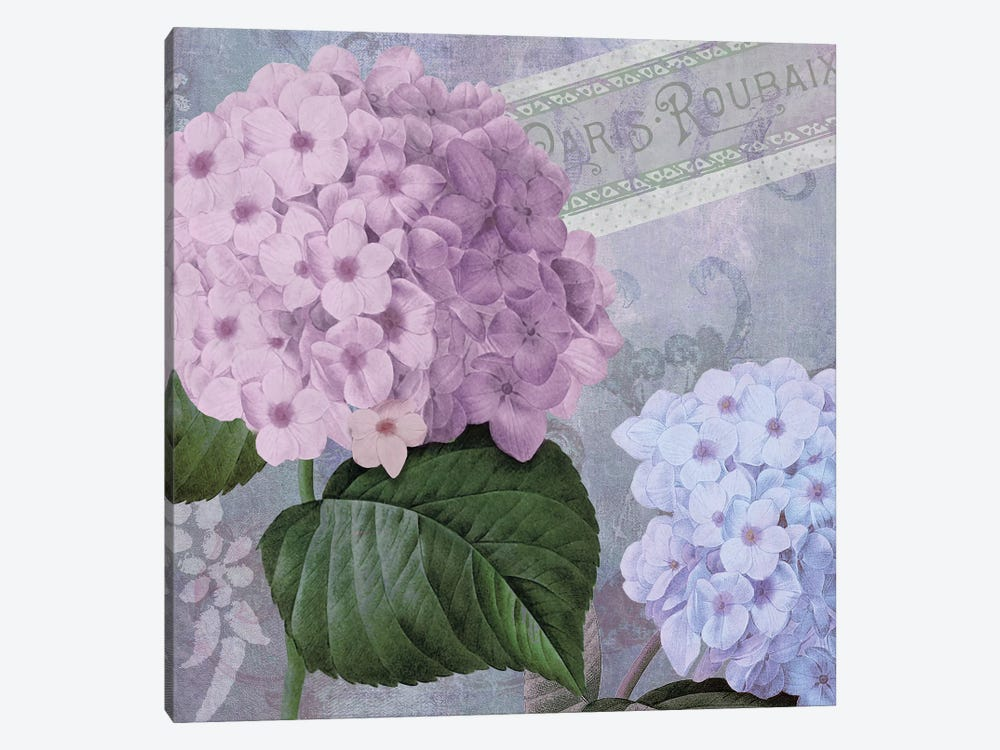 Hortensia II by Color Bakery 1-piece Canvas Print