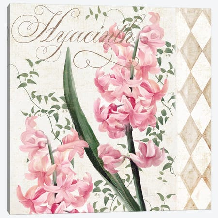 Hyacinth Canvas Print #CBY510} by Color Bakery Canvas Wall Art