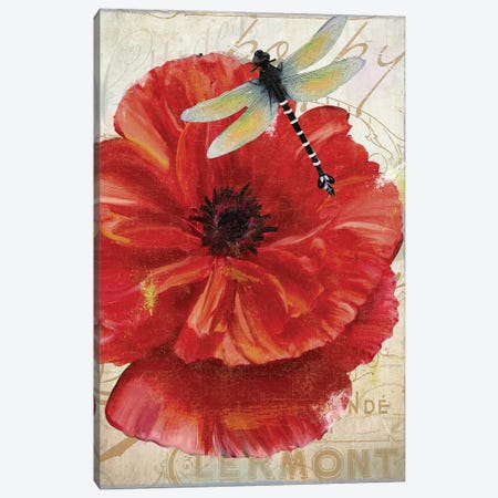 Le Pavot Dragonfly Canvas Print #CBY558} by Color Bakery Canvas Artwork