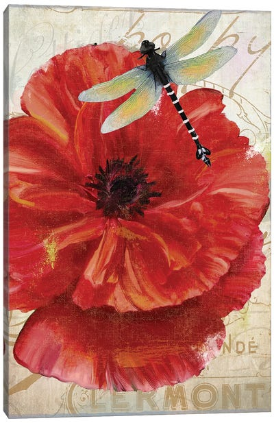 Le Pavot Dragonfly Canvas Art Print