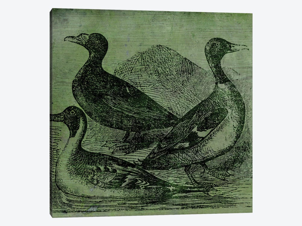 Mallards by Color Bakery 1-piece Canvas Print